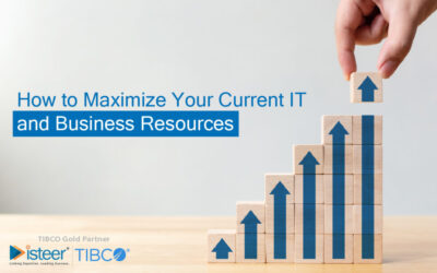 How to Maximize Your Current IT and Business Resources